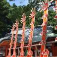 熊野那智大社十二体の扇神輿